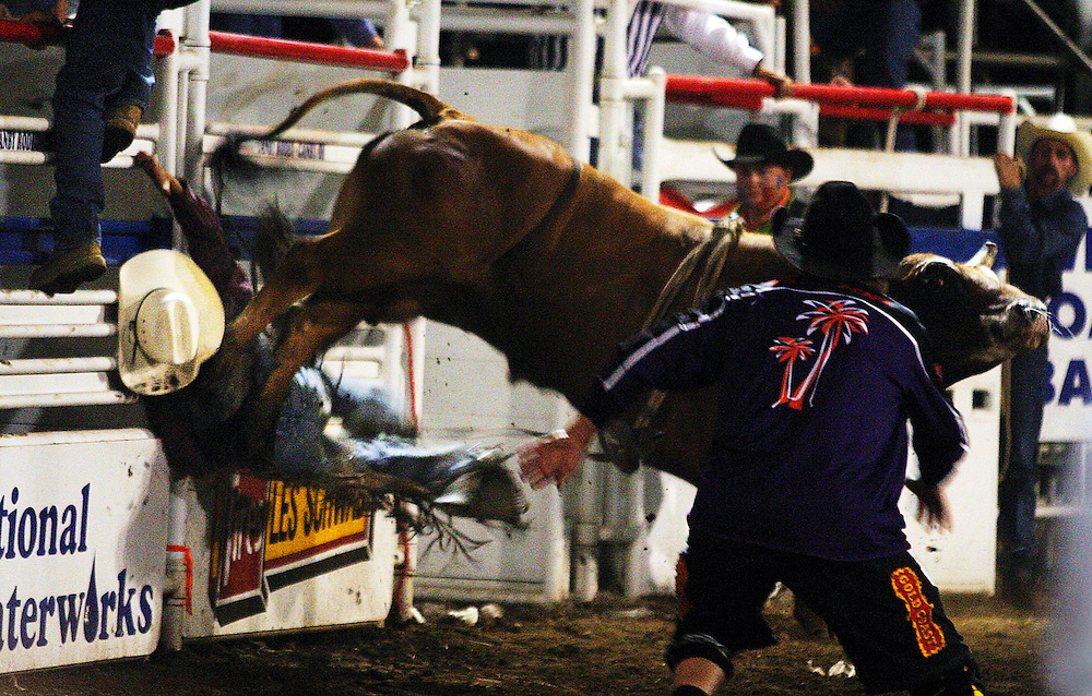Bull rider Zeb Lanham is slammed into the chute rails by an angry bull for a no score during the Clackamas County Fair & Rodeo. Lanham staggered off the dirt under his own power.