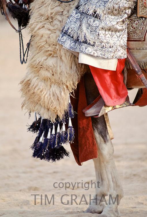 Detail of Nigerian chief on horseback in Maiduguri, Nigeria, West Africa