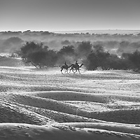 The dust and sand of the Thar Desert in northwestern India create harsh, challenging conditions but also beautifully moody images reminiscent of some magical past.