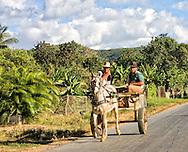 Horse and cart near Vinales, Pinar del Rio, Cuba.