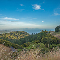 Grassy pastures and patchy forest on the southern slopes of Mount Tamalpais lead down to the Pacific Ocean, just north of San Francisco in in Marin County, California.