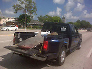 """May 21, 2010 - Florida, <br /> <br /> Shark In A Truck<br /> <br /> We think he needed a bigger truck. This is Josh Lipert driving home after a fishing trip with some bite he snagged a bull shark at over eight feet long, and then tossed in the back of his pickup.But dozens of stunned motorists started snapping pictures and driving up to Josh's window to ask if it was real. Josh had spent almost two hours reeling in the 325-pound monster at a pier in St. Petersburg, Florida. He said: """"I had people chasing me down with their camera phones,""""They were hanging over their steering wheels, out their windows, trying to take pictures.  I had people pulling alongside me asking if it was fake.""""He took it to a local facility for it to be carved it into steaks, which he gave to friends and kept the jaws as a souvenir.<br /> ©Exclusivepix"""
