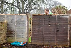 Repairing  wooden fence panels