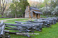 66745-04316 John Oliver Cabin in spring, Cades Cove area, Great Smoky Mountains National Park, TN