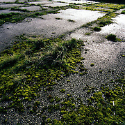 Moss and weeds now grow where once B-24 Liberators of the 392nd US Air Force bomb Group took-off to attack German cities during WW2. Land once again owned by local farmers, the airfields of Norfolk and Suffolk in south-east England were home to 85,000 US personnel from 1942-45.