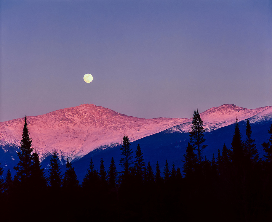 Full moon rising over Mt Washington, with pink alpenglow on mountaintop, spruce treeline in silhouette below, Bretton Woods, NH