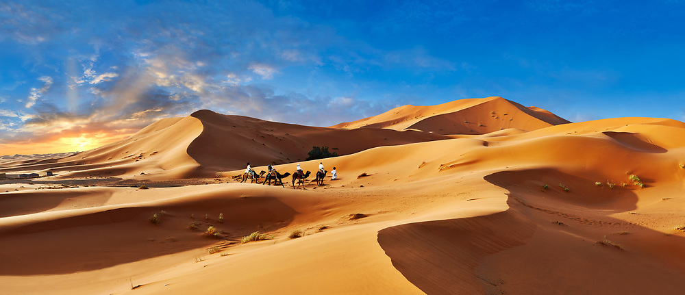 Camels rides amongst the Sahara sand dunes of erg Chebbi, Morocco, Africa .<br /> <br /> Visit our MOROCCO HISTORIC PLAXES PHOTO COLLECTIONS for more   photos  to download or buy as prints https://funkystock.photoshelter.com/gallery-collection/Morocco-Pictures-Photos-and-Images/C0000ds6t1_cvhPo