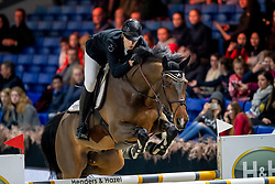 Philippaerts Thibault, BEL, Lucky Luke de Goedereede<br /> Jumping Mechelen 2019<br /> © Hippo Foto - Dirk Caremans<br />  26/12/2019
