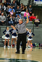 24 January 2015: 104th McLean County Tournament.  Fieldcrest Knights v Ridgeview Mustangs Boys Championship at Shirk Center, Bloomington Illinois