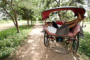 A horse cart driver takes a snooze in the back of the cart in Bagan, Myanmar