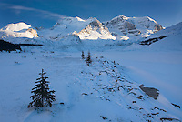 Mount Athabasca and Mount Andromeda in winter seen from the glacial plain of the Sunwapta River, Jasper National Park Alberta Canada