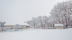 Well, the view from the backyard is still a Winter Wonderland. If your wondering where that new nice contrasting black fence came from, it was Tri-County Fence & Deck!