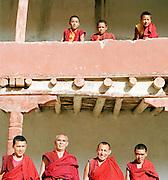 Novice and mature monks on and below monastery balcony, Ladakh, India.