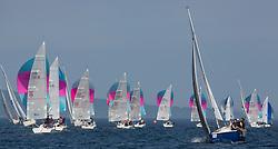 Silvers Marine Scottish Series 2017<br /> Tarbert Loch Fyne - Sailing<br /> <br /> Hunter 707 Fleet downwind with Sonata GBR8173N, Kalm, Steven Lyon, Cove, Sonata OD<br /> <br /> Credit Marc Turner / PFM