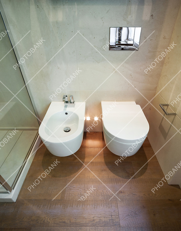 interior modern house,  bathroom, toilet and bidet view