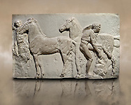 Releif Sculptures from the frieze around the Parthenon Block XV. From the Parthenon of the Acropolis Athens. A British Museum Exhibit known as The Elgin Marbles