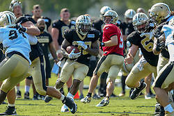 July 28, 2018 - Metairie, LA, U.S. - METAIRIE, LA. - JULY 28:  New Orleans Saints quarterback Drew Brees (9) hands the ball off to running back Terrance West (38) during New Orleans Saints training camp practice on July 28, 2018 at the Ochsner Sports Performance Center in New Orleans, LA.  (Photo by Stephen Lew/Icon Sportswire) (Credit Image: © Stephen Lew/Icon SMI via ZUMA Press)