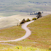 A dirt road winds its way through the National Bison Range in Montana Missoula Photographer, Missoula Photographers, Montana Pictures, Montana Photos, Photos of Montana