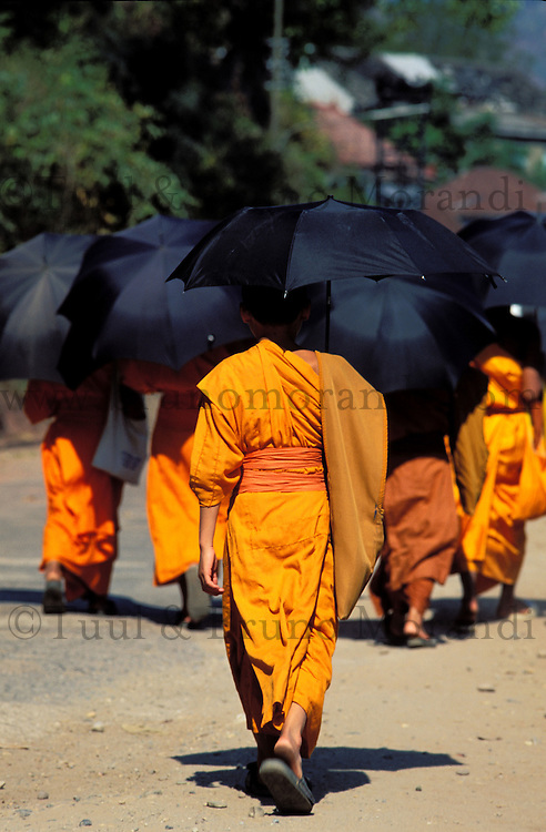 Laos - Luang Prabang -Moines