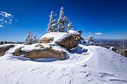 Wind-blown snow and rime ice on pines in the San Bernardino Mountains, San Bernardino National Forest, California USA