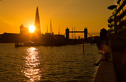 © Licensed to London News Pictures. 31/03/2016. London, UK. A woman watches the warm golden sunset behind the London Shard and Tower Bridge this evening after sunny spring weather in London today. Photo credit : Vickie Flores/LNP