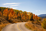 Country Road Winds Through Autumn Leaves in Wyoming