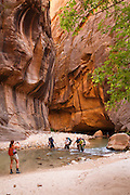 Hikers in The Narrows on the Virgin River, Zion National Park, Utah.