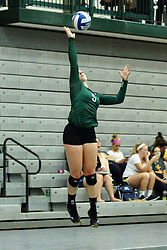 22 September 2015:  Tyler Brown(5) during an NCAA womens division 3 Volleyball match between the Augustana Vikings and the Illinois Wesleyan Titans in Shirk Center, Bloomington IL