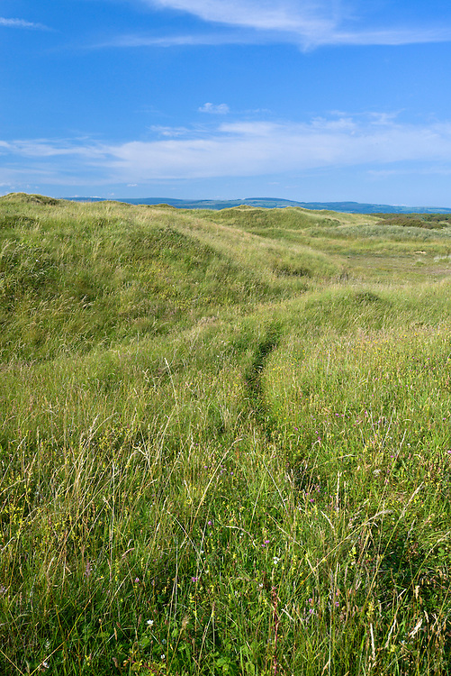 Dune system at Kenfig Nature Reserve, South Wales