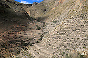 Hillside terraces countryside landscape, near Huebro, Ruta del Agua, Sierra Alhamilla mountains, Nijar, Almeria, Spain