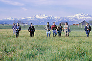Guy McCaskie leads birders searching for Yellow Rail<br /> Bridgeport, CA<br /> June 1965
