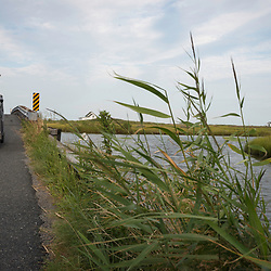 August 4, 2017 - Tangier Island, VA - A cross sits on the marsh of one of the waterways that criss-cross the marshy Tangier Island. The island's two churches are well-attended by the highly religious populace of 700.<br /> Photo by Susana Raab/Institute