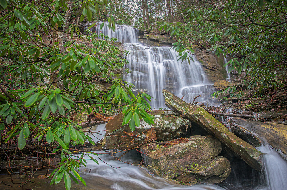 Hidden just off the well-traveled route 16 near Hawks Nest West Virginia, lies a seasonal alcoved waterfall called Honey Branch, clothed in rhododendron cutting down the mountains and joining the New River.