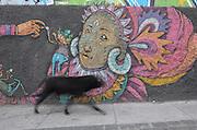 A street dog walks past colorful graffiti adorning a wall in Cerro Alegre, Valparaiso.