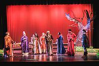 Robin Hood - Norwood High in Norwood MA - May 2016