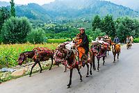 Nomadic people on horseback near the mountain town of Pahalgam, Kashmir, Jammu and Kashmir State, India.
