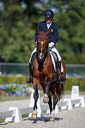 Castilla Ruiz Claudio, ESP, San Pikado<br /> Longines FEI/WBFSH World Breeding Dressage Championships for Young Horses - Ermelo 2017<br /> © Hippo Foto - Dirk Caremans<br /> 04/08/2017