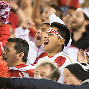 EAST HARTFORD, CONNECTICUT- October 16th: Fans of Peru celebrate a goal during the United States Vs Peru International Friendly soccer match at Pratt & Whitney Stadium, Rentschler Field on October 16th 2018 in East Hartford, Connecticut. (Photo by Tim Clayton/Corbis via Getty Images)