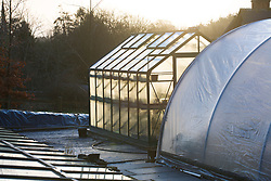 First light on the greenhouse and polytunnel at Glebe Cottage