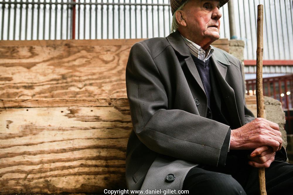 Reportage sur la vente aux encheres de bovins de Ballinakill au sud de Dublin, Irlande. // Report on the cattle auction of Ballinakill, Irlande