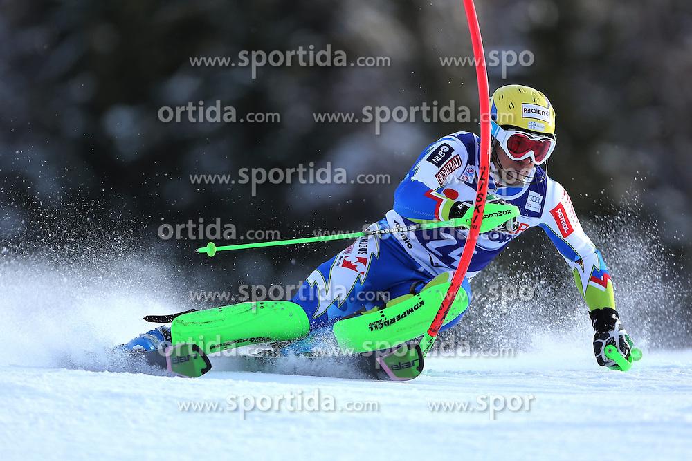 06.01.2014, Stelvio, Bormio, ITA, FIS Weltcup Ski Alpin, Bormio, Slalom, Herren, im Bild Mitja Valencic // Mitja Valencic  in action during mens Slalom of the Bormio FIS Ski World Cup at the Stelvio in Bormio, Italy on 2014/01/06. EXPA Pictures © 2014, PhotoCredit: EXPA/ Sammy Minkoff<br /> <br /> *****ATTENTION - OUT of GER*****