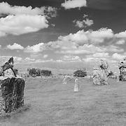 Neolithic Stones  And Markers - Avebury, UK _ Infrared Black & White