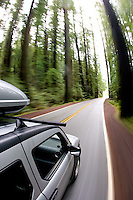 Driving through the Avenue of the Giants in Redwood National Park. Humbolt County, CA.