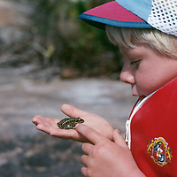 A youngster admires a frog he caught.