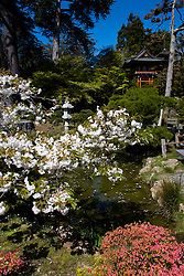 California: San Francisco. Japanese Tea Garden in Golden Gate Park.  Photo copyright Lee Foster.  Photo #: 24-casanf78909