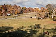WillsWay Equestrian Center