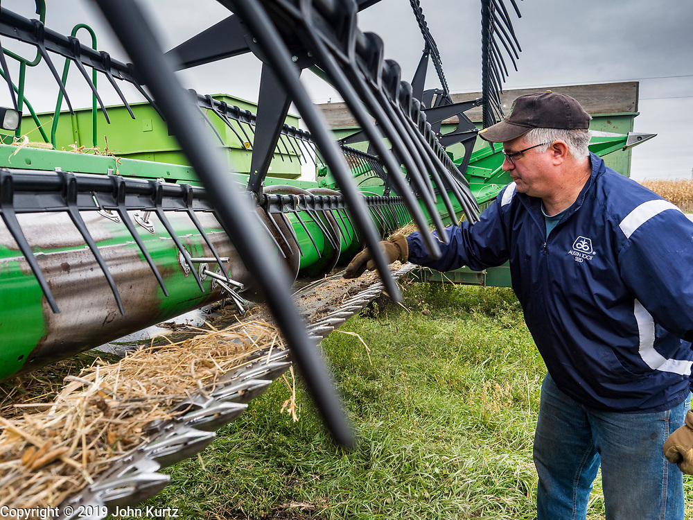 27 OCTOBER 2019 - POLK CITY, IOWA: IAARON LEHMAN, President of the Iowa Farmers Union, cleans chaff out of his combine while harvesting organic soybeans on his farm near Polk City, Iowa. Iowa farmers have been weeks behind schedule through most of the 2019 growing season. A cold, wet spring across most of the state delayed planting by about 2 weeks. A historically wet October has pushed back the harvest of soybeans and corn by up 3 weeks. Lehman said he's two weeks behind on his soybean harvest and further behind on corn. The USDA said about 30% of the soybeans have been harvested, and only 15% of the corn has been harvested. Central Iowa normally gets about 2.6 inches of rain in October, this year central Iowa has received about  7.3 inches of rain. Some parts of central Iowa are expecting up to 3 inches of snow later this week, further pushing back the harvests. This year has been the wettest year on record in Iowa. Farmers have also been contending with low prices, brought on by trade war between the US and China. The Chinese government put retaliatory tariffs on US agricultural products and cut back on orders of soybeans, corn, and pork, all important Iowa agricultural products. Soybean prices have fallen by as much as 20%.           PHOTO BY JACK KURTZ
