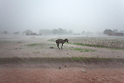 After 15 minutes of rain everything is flooded, Burkina Faso.