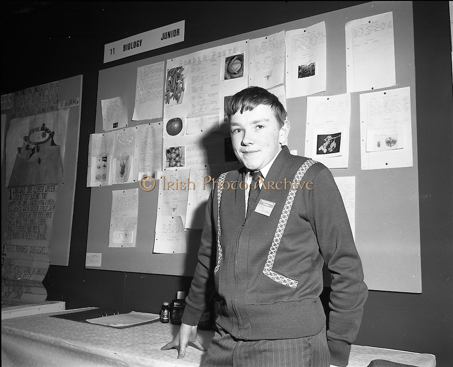 3/1/75.1/3/75.3rd January 1975.The Aer Lingus Young Scientist Exhibition at the RDS, Dublin...Picture shows Phillip Dowdall of CBS, Kells, who project whose project was on garden pasts. .