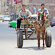 Horse and cart, still a common sight on the streets of Rashid.